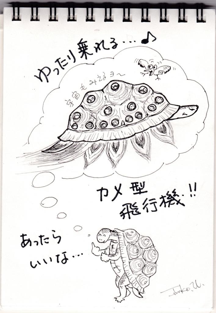 f:id:kameusakiji:20190305234345j:plain