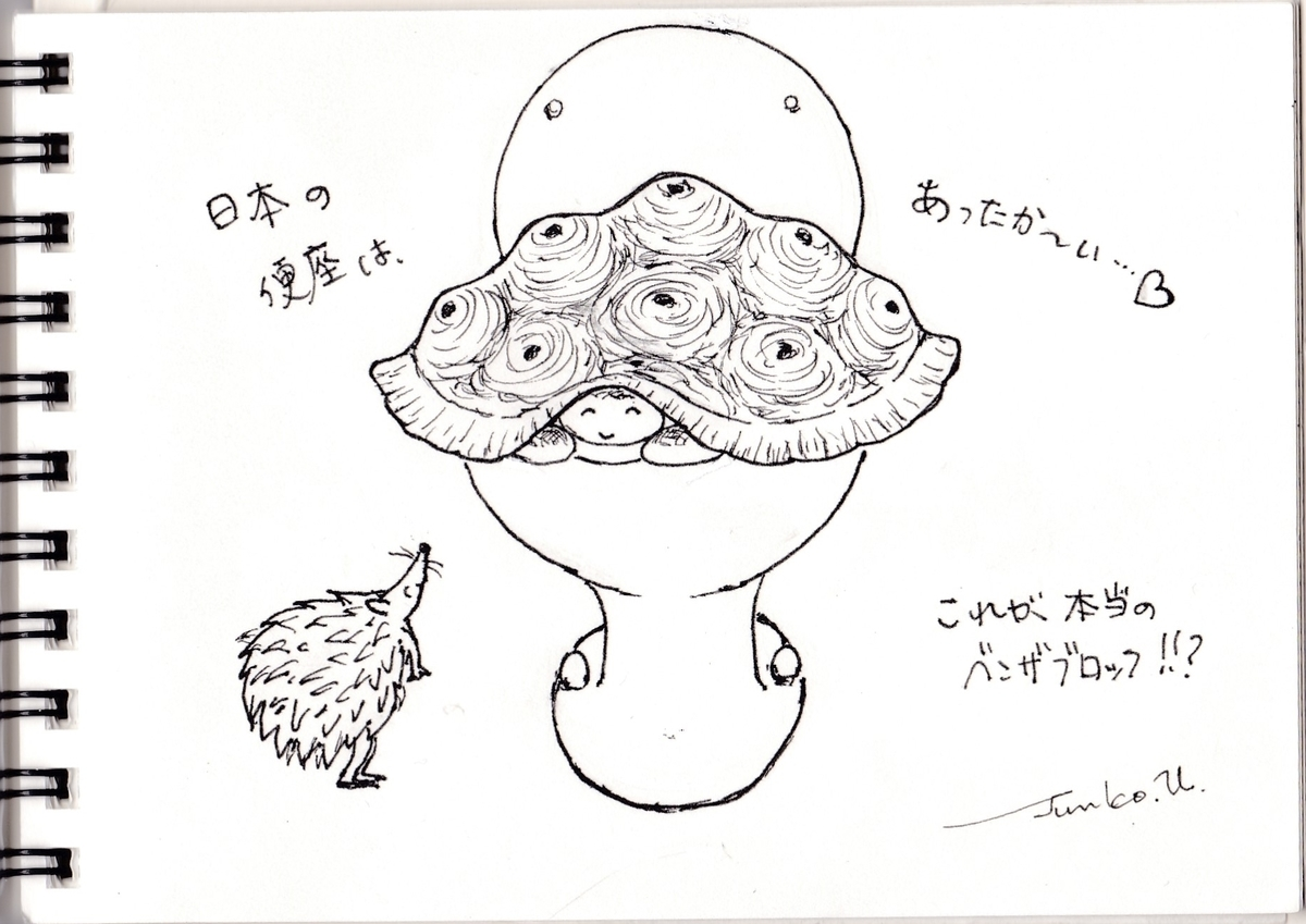f:id:kameusakiji:20190508233447j:plain