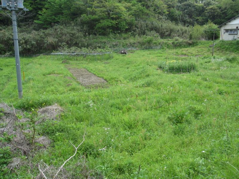 f:id:kameyamasanso:20120506085949j:image