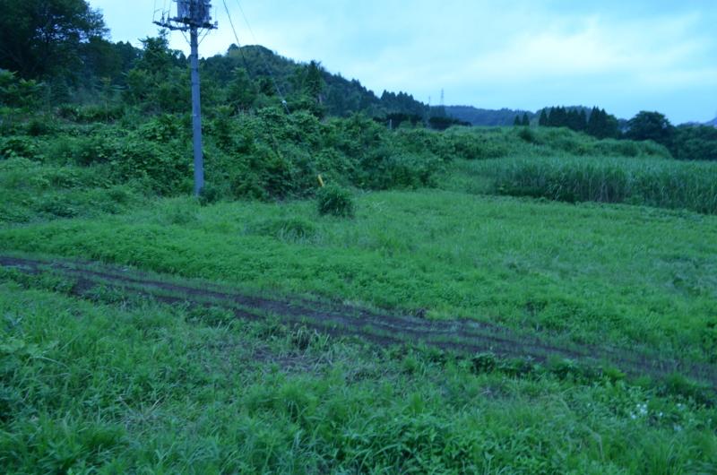 f:id:kameyamasanso:20120617095827j:image