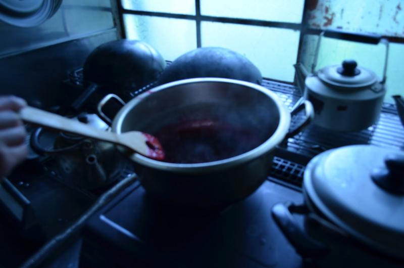 f:id:kameyamasanso:20120715102413j:image