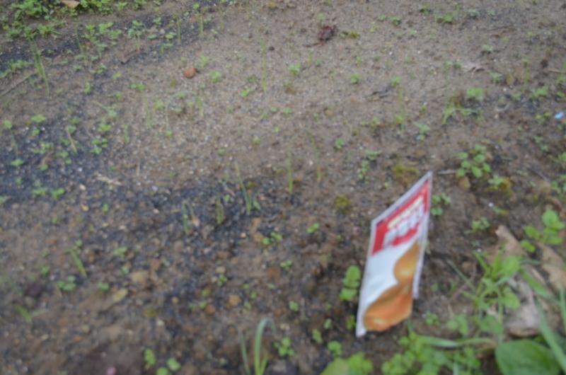 f:id:kameyamasanso:20121111092523j:image