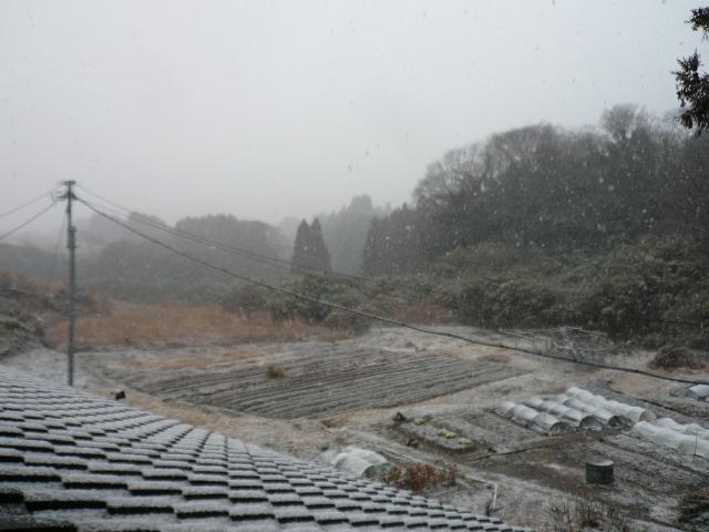 f:id:kameyamasanso:20130219122720j:image