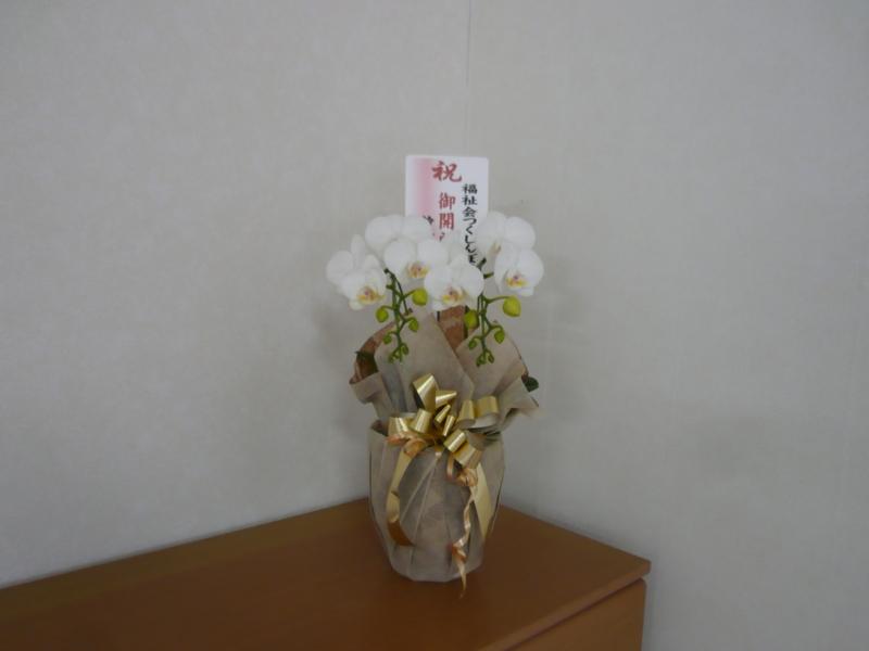 f:id:kameyamasanso:20130402103742j:image