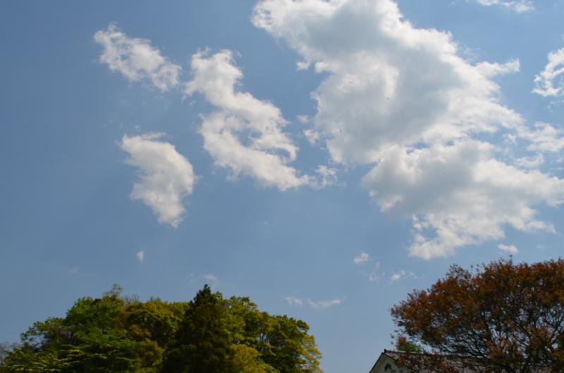 f:id:kameyamasanso:20130428130016j:image