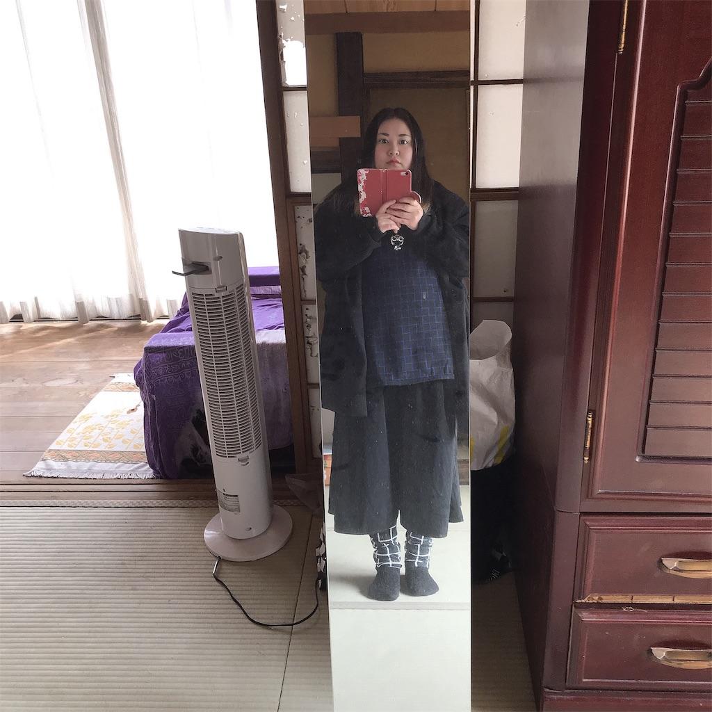 f:id:kameyamatomomi:20190226115046j:image