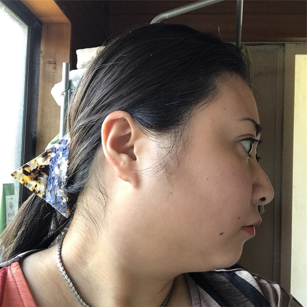 f:id:kameyamatomomi:20191004134236j:image