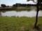 武蔵野の森公園、修景池