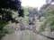 善福寺公園、上池
