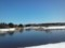 カモの池、さらに凍結