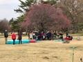 公園でお誕生会