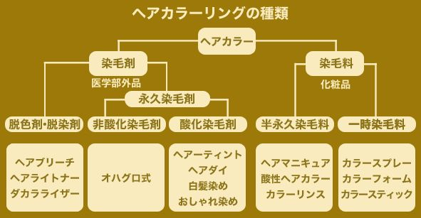 f:id:kami-nayami:20190906152202j:plain