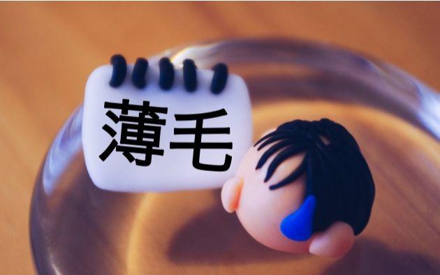 f:id:kami-nayami:20191010143112j:plain