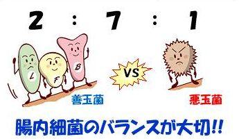 f:id:kami-nayami:20191121140323j:plain