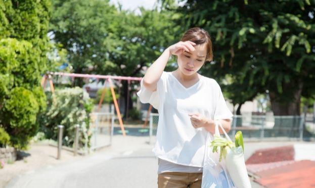 f:id:kami-nayami:20191213153031j:plain