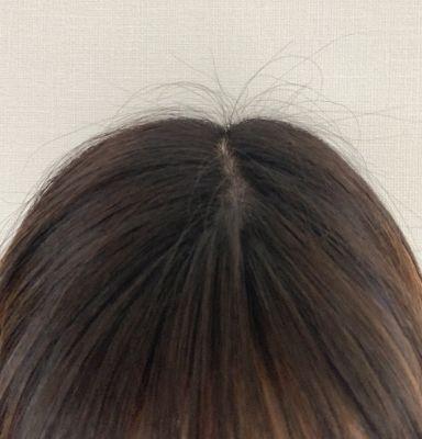 f:id:kami-nayami:20191214161937j:plain