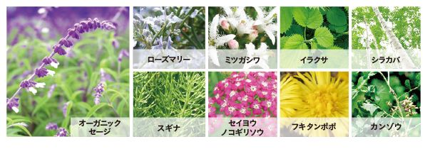 f:id:kami-nayami:20200612143340j:plain