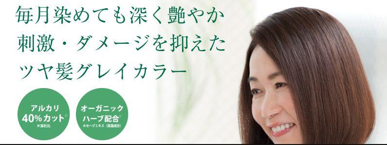 f:id:kami-nayami:20210409151241j:plain