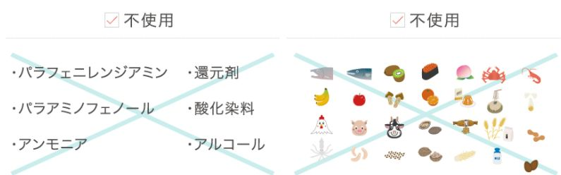 f:id:kami-nayami:20210410120408j:plain