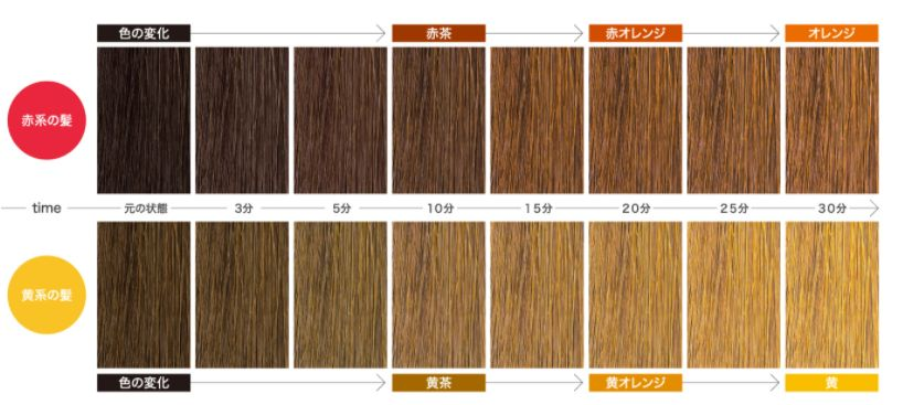 f:id:kami-nayami:20210424153240j:plain