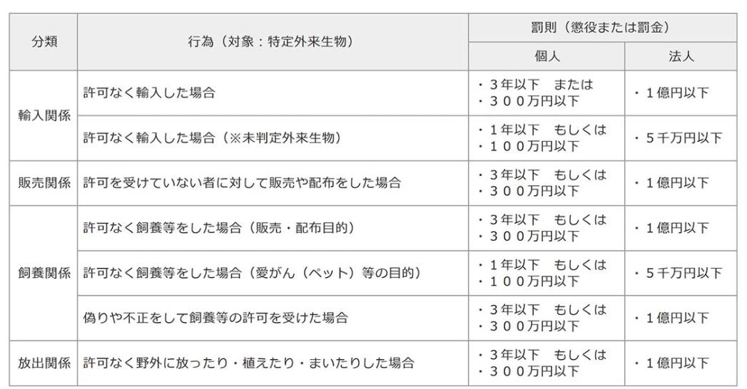 f:id:kami2775:20200825114244j:plain