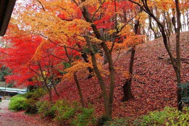 f:id:kamiaki:20121205152028j:plain