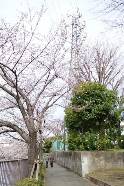f:id:kamiaki:20130323102008j:plain