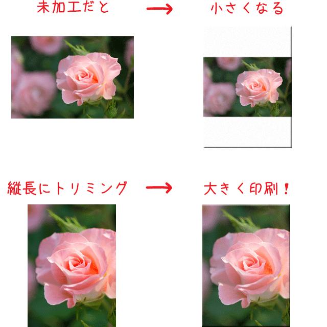 f:id:kamiaki:20140724005014p:plain