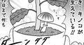 カピバラとイルカの奇妙な生活_観葉植物_キノコ