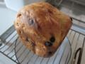 [食べ物][ホームベーカリー]ブルーベリーとヨーグルトのパン
