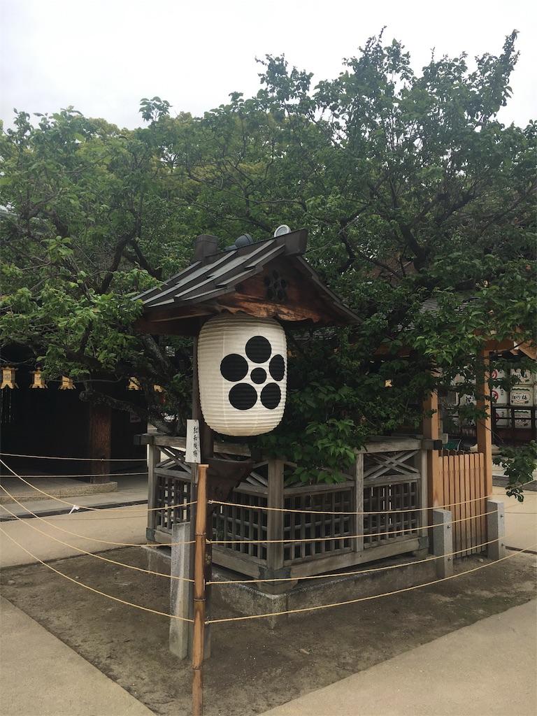 f:id:kamibutsuyoku:20160512120909j:image
