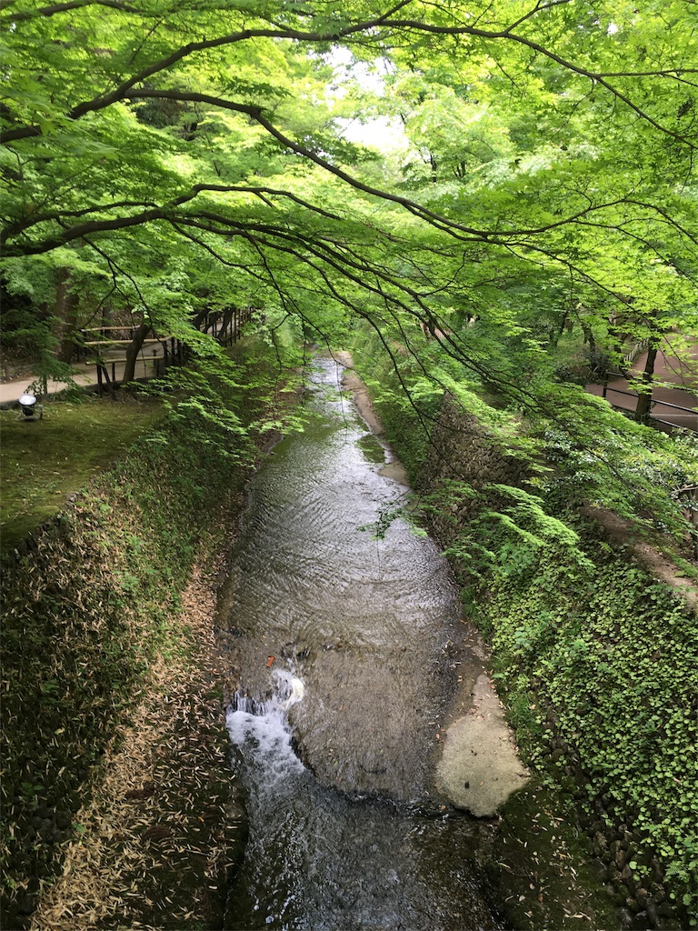 f:id:kamibutsuyoku:20160512121510j:image