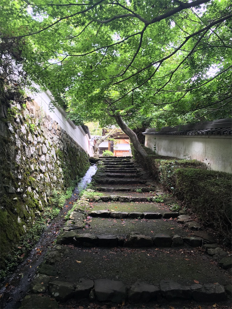 f:id:kamibutsuyoku:20160914225325j:image