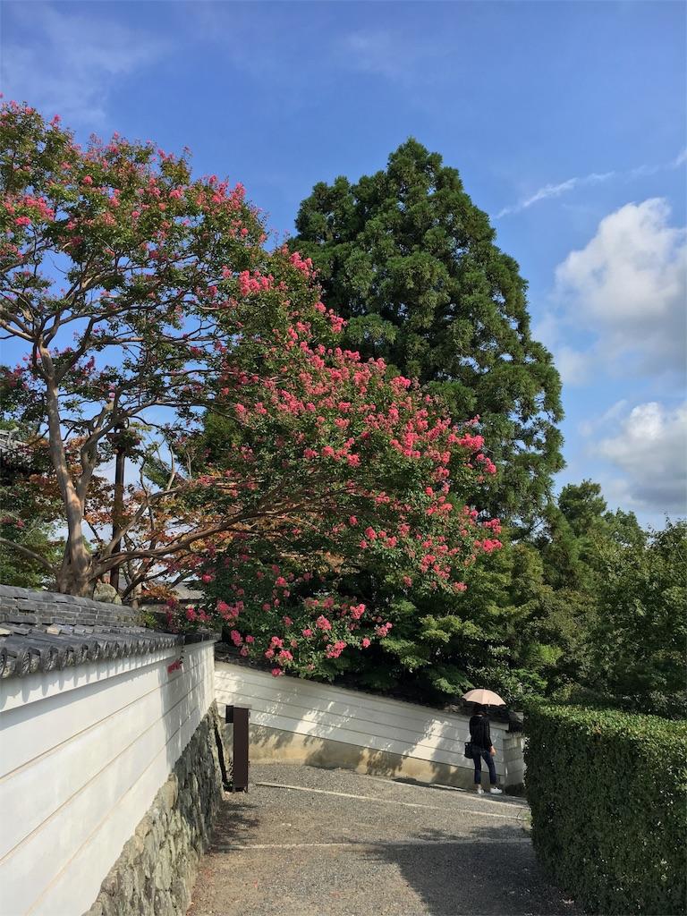 f:id:kamibutsuyoku:20160921074422j:image