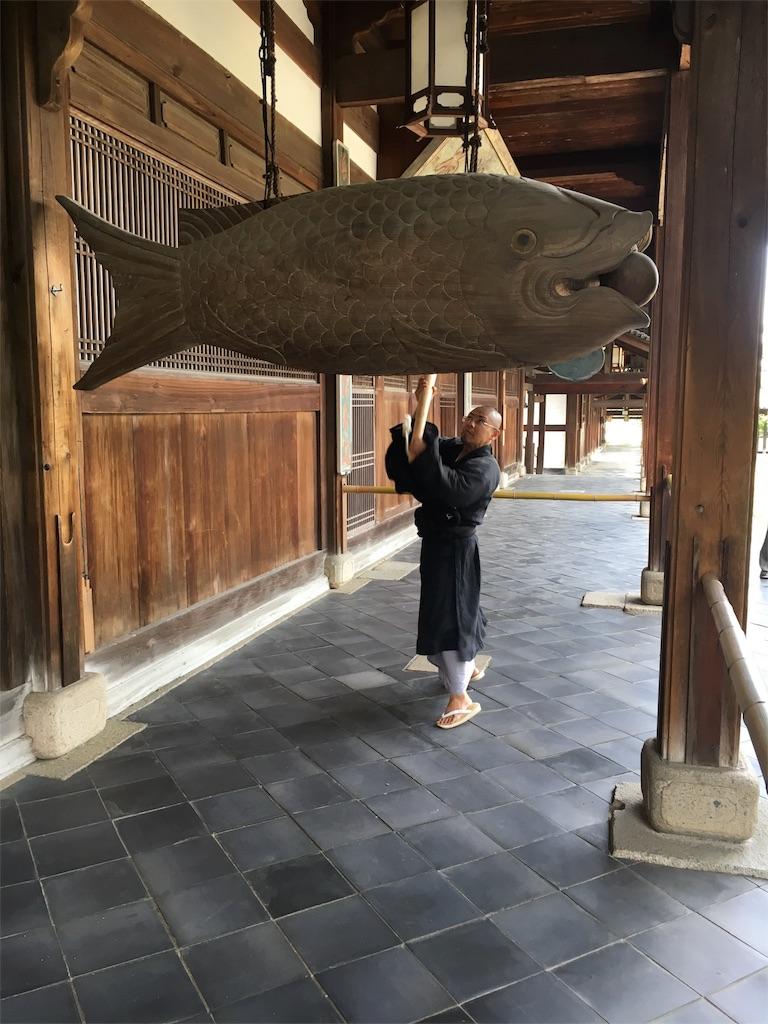f:id:kamibutsuyoku:20160922183454j:image