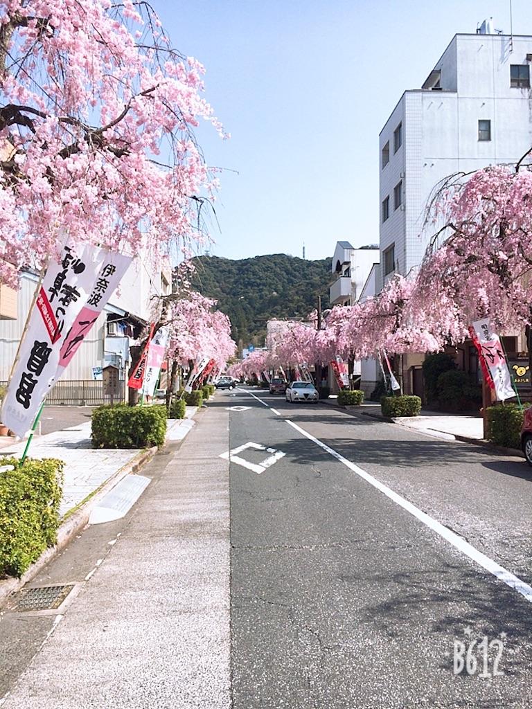 f:id:kamibutsuyoku:20180402122855j:image