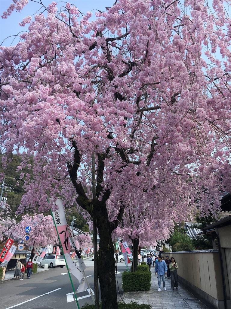 f:id:kamibutsuyoku:20180402122915j:image