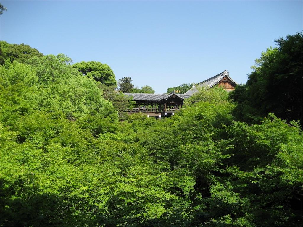 f:id:kamibutsuyoku:20180418080645j:image
