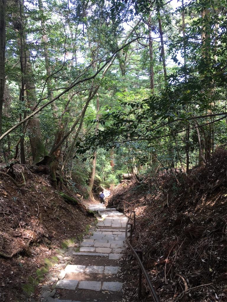 f:id:kamibutsuyoku:20180531211141j:image