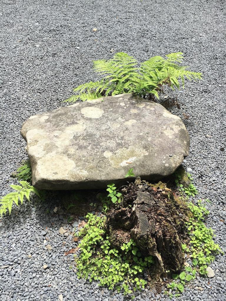 f:id:kamibutsuyoku:20180610142723j:image