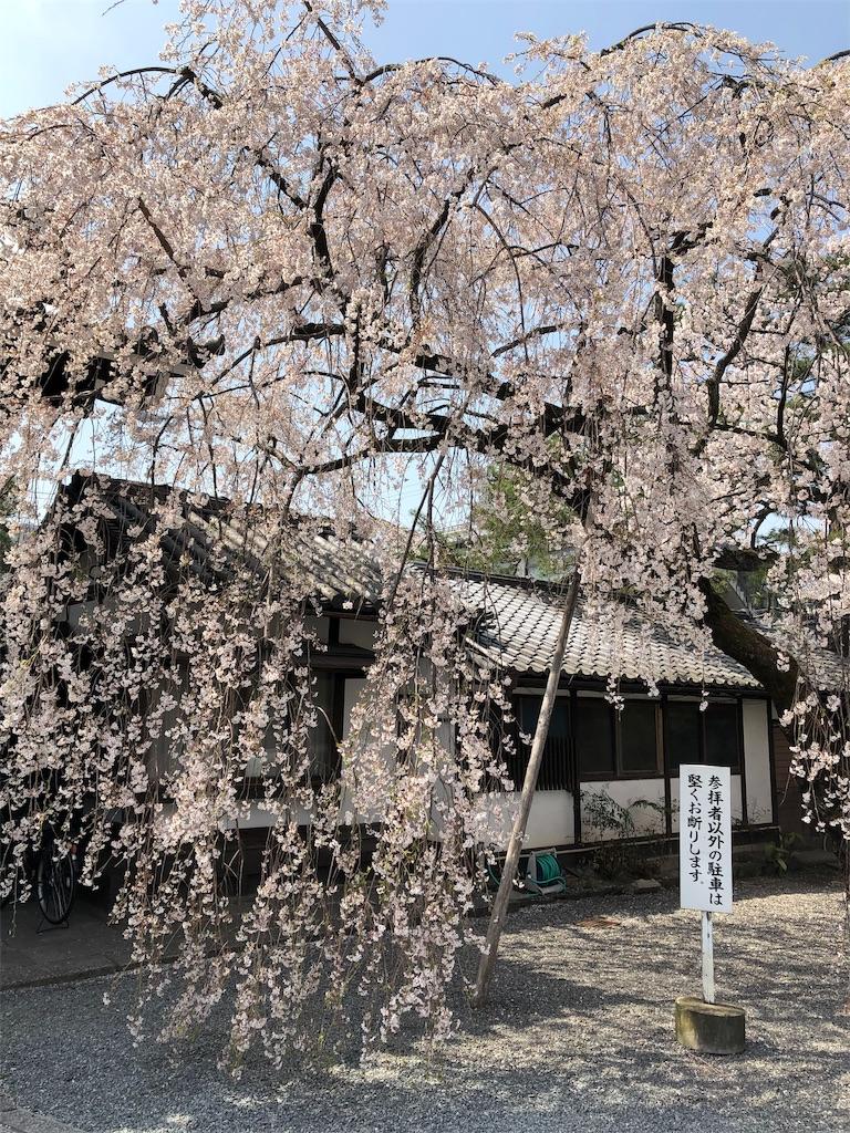 f:id:kamibutsuyoku:20190413161053j:image