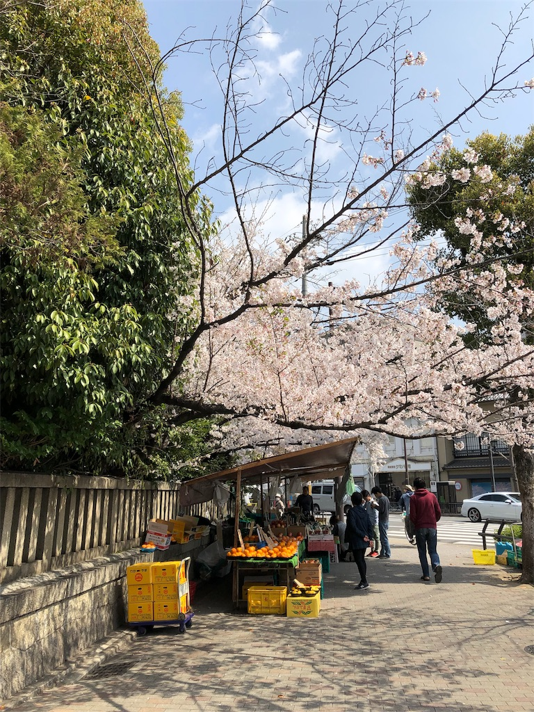 f:id:kamibutsuyoku:20190415190816j:image