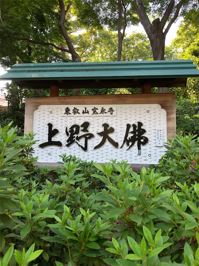 f:id:kamibutsuyoku:20190529215200j:image