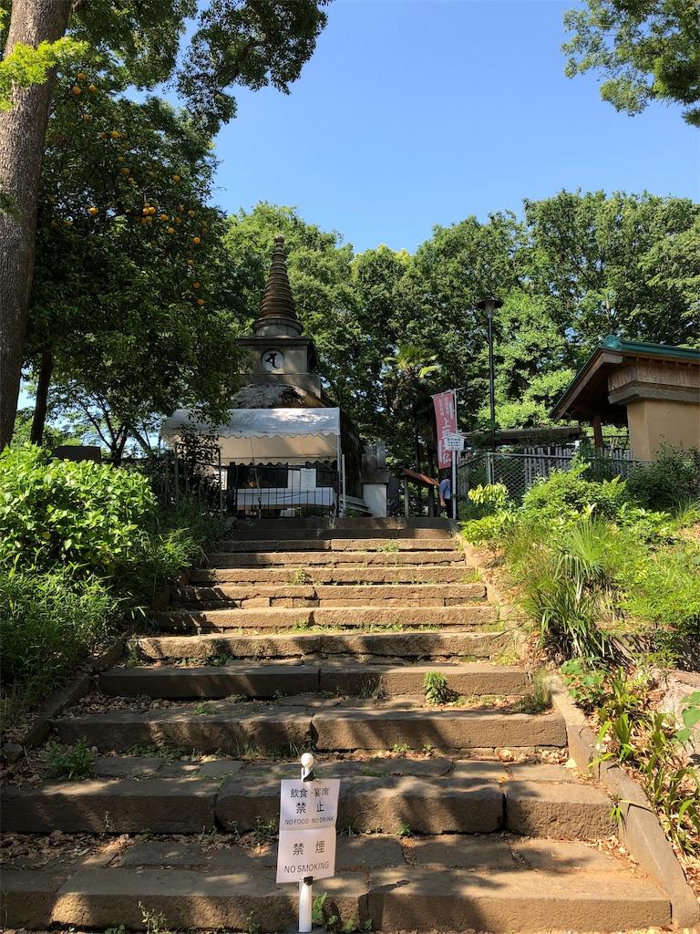 f:id:kamibutsuyoku:20190529215859j:image