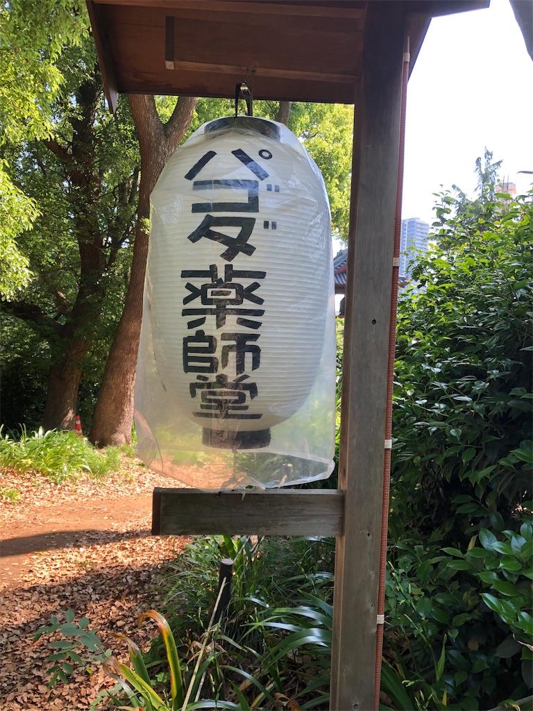 f:id:kamibutsuyoku:20190531070733j:image