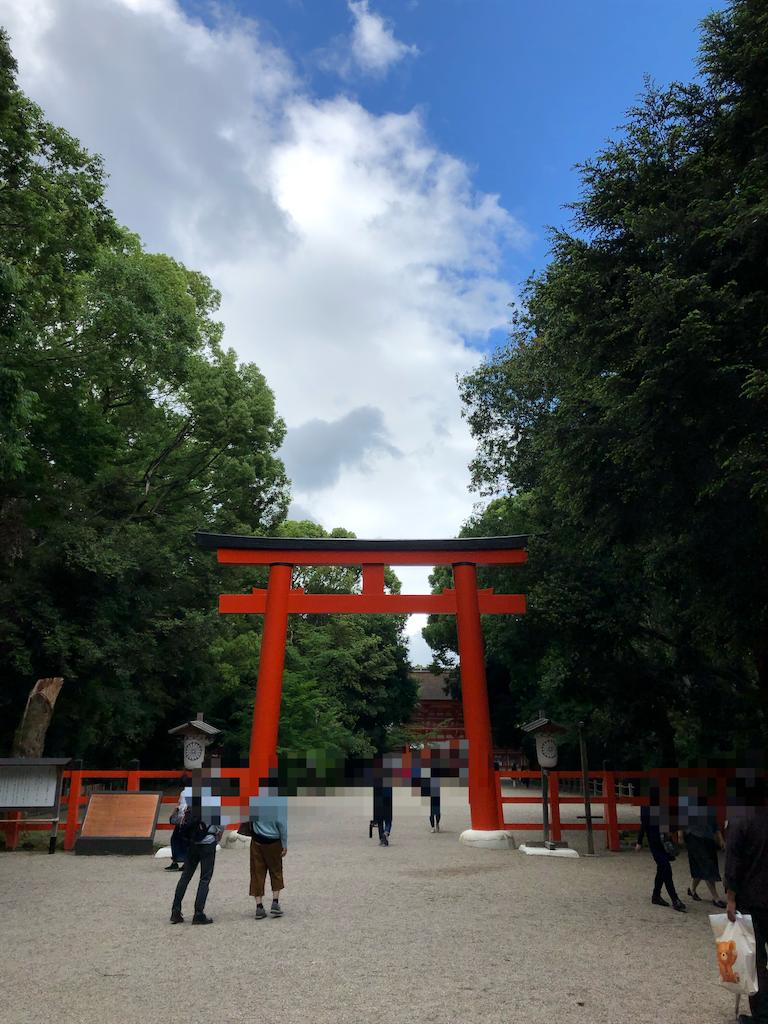 f:id:kamibutsuyoku:20190617123358p:image