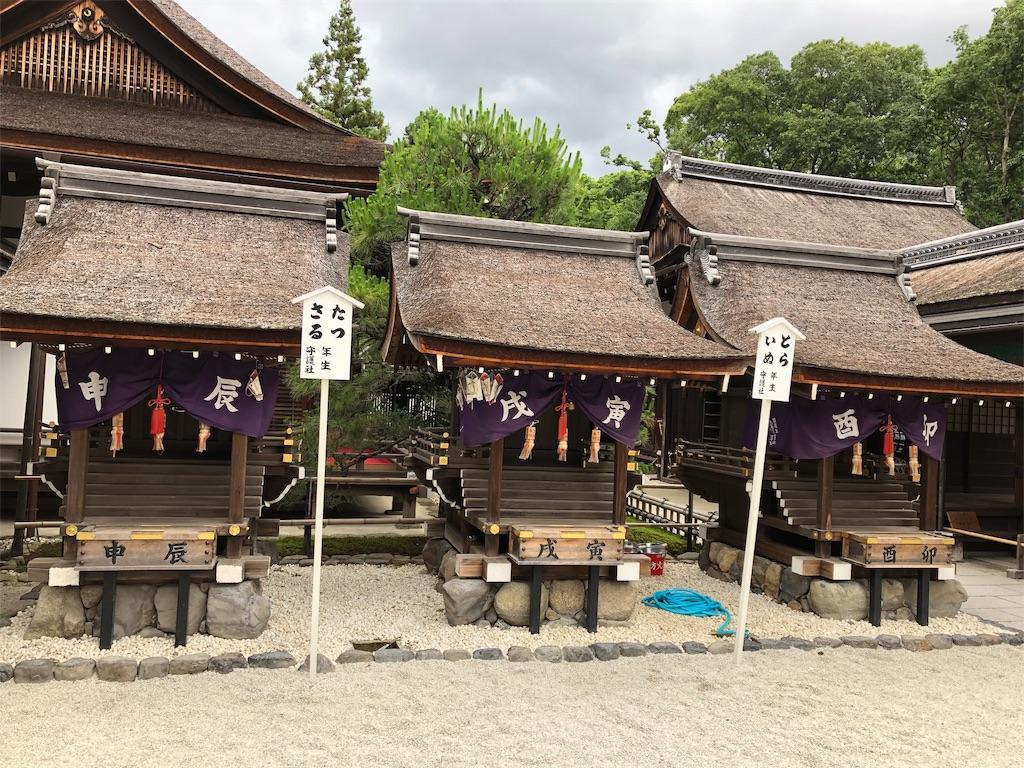 f:id:kamibutsuyoku:20190617124040j:image