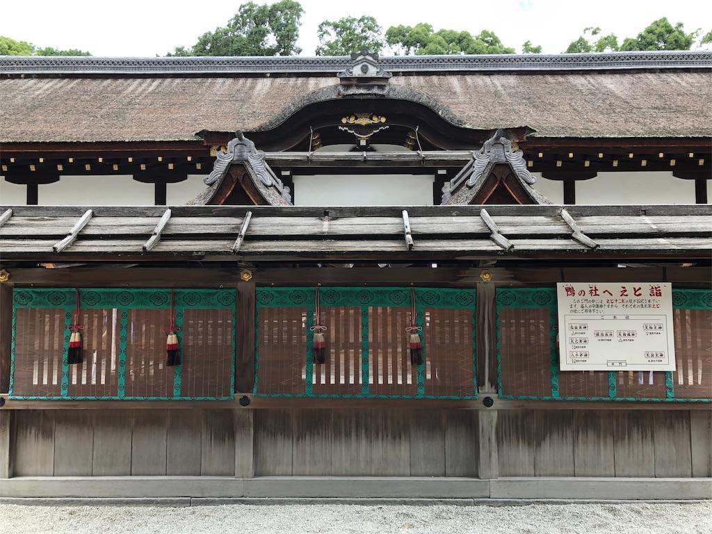 f:id:kamibutsuyoku:20190619071151j:image