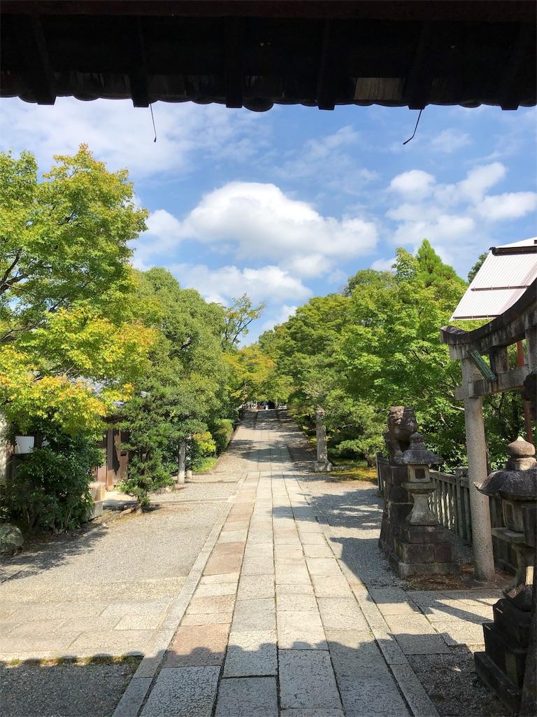 f:id:kamibutsuyoku:20190828123411j:image