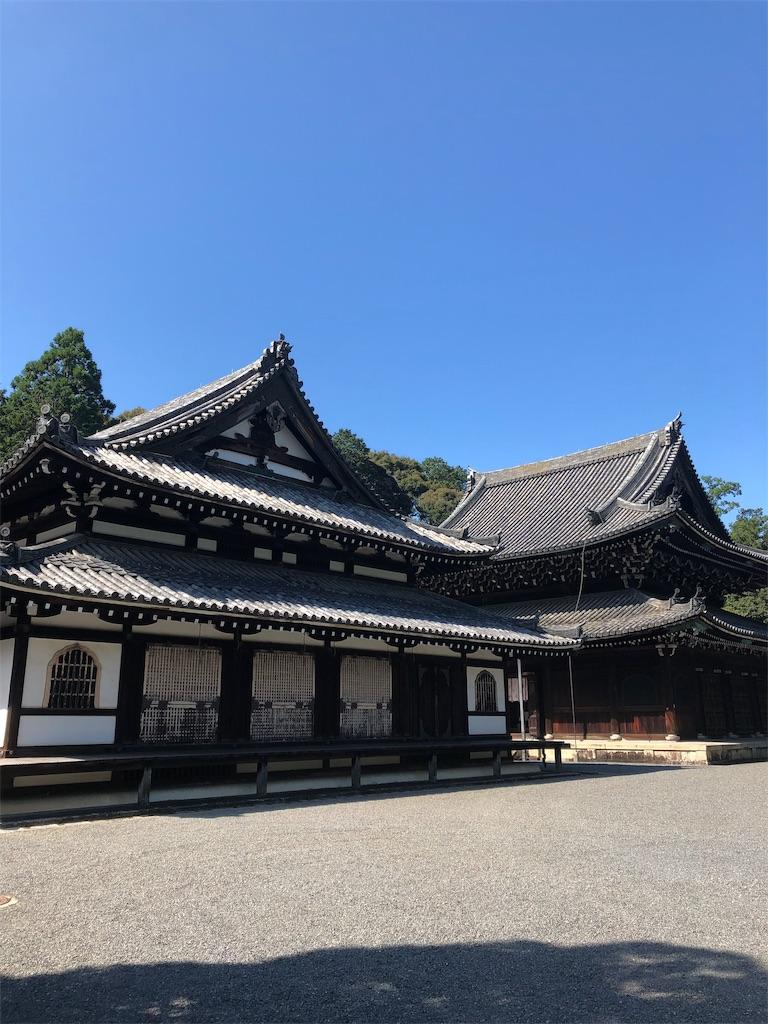 f:id:kamibutsuyoku:20190916114037j:image
